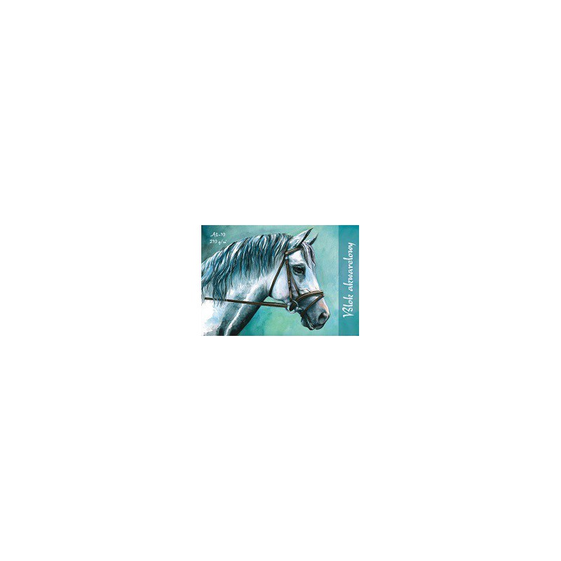 BLOK AKWARELOWY 210G A3/10