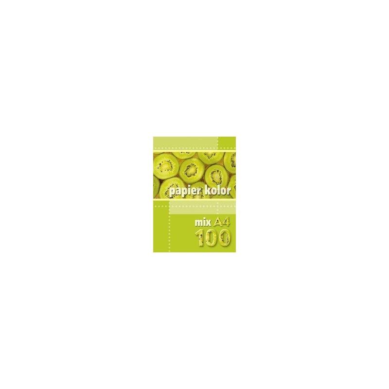 PAPIER KOLOR A4 100 MIX